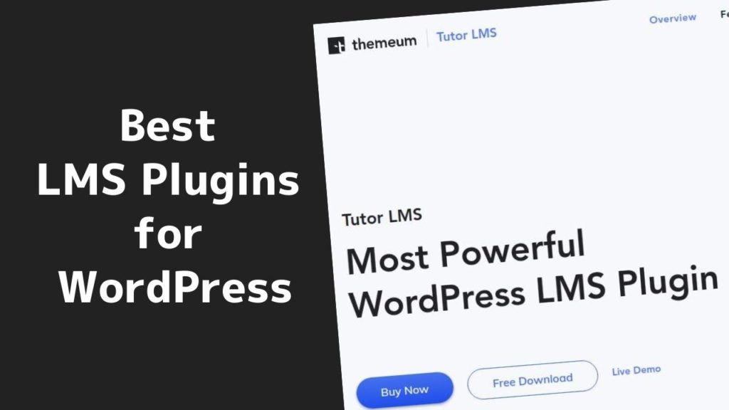 The BEST LMS Plugins for WordPress