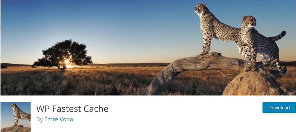 5 Best WordPress Caching Plugins (2020) 11 2020