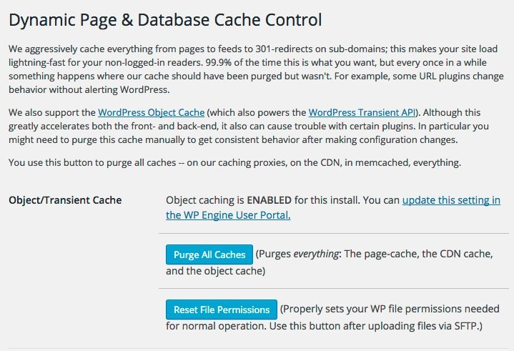 WPEngine Caching Settings